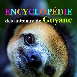 Encyclopédie des animaux de Guyane