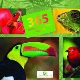 365 FAUNE 1 265x265 - 365 animaux d'Amérique tropicale
