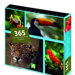 365 animaux d'Amérique tropicale