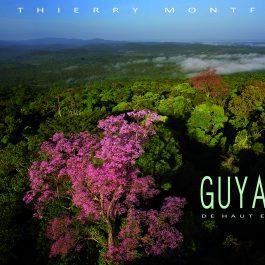 Guyane de haut en bas