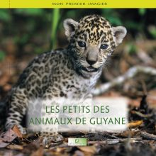 PETITS DES ANIMAUX DE GUYANE COUV 220x220 - Mon premier imagier : Les petits des animaux de Guyane