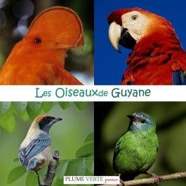 Mini-imagier : Les oiseaux de Guyane