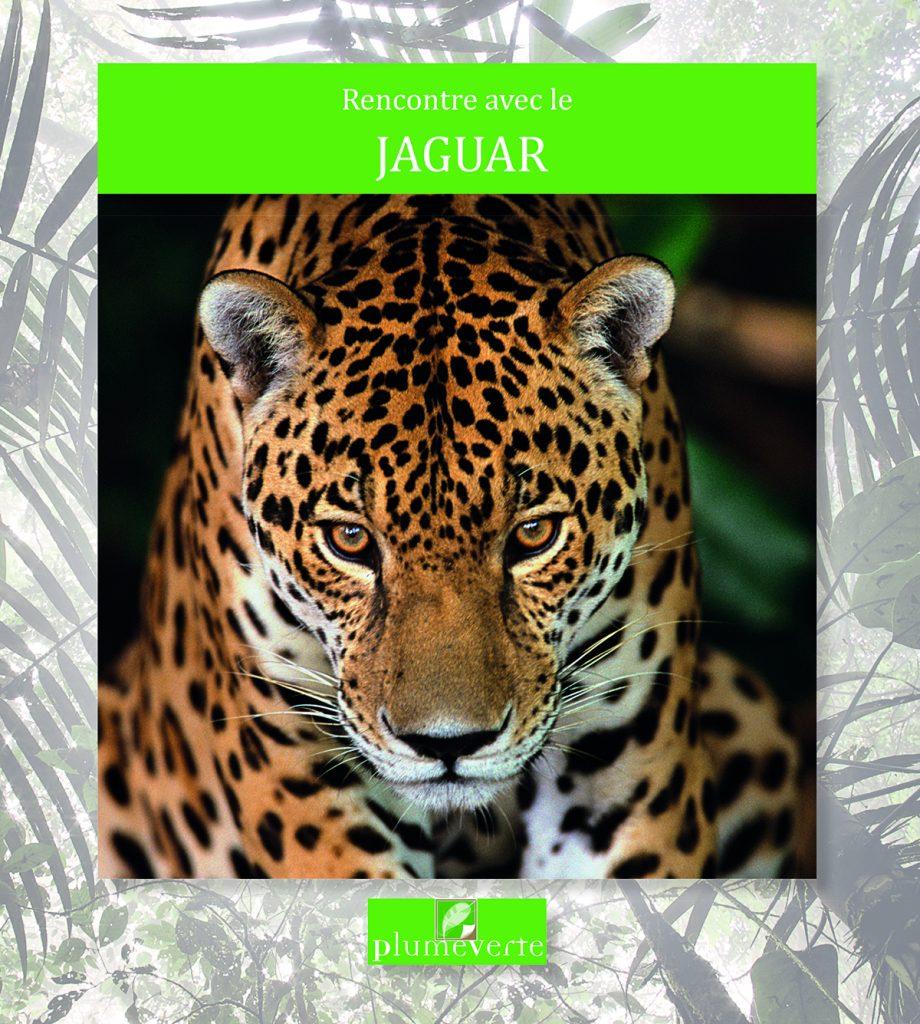Le Jaguar couv.indd