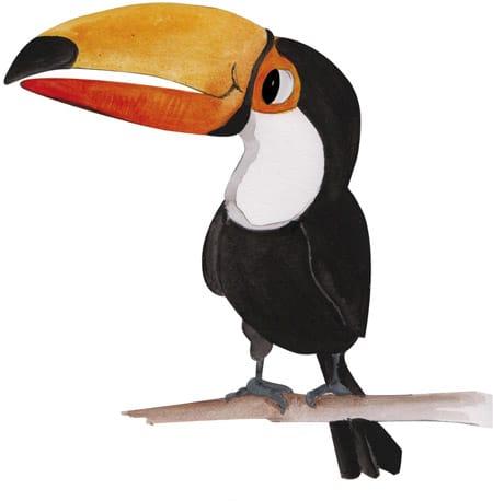 toucan-big