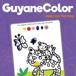 COLORIAGE FORMES 21x27 COUV 265x265 - GuyaneColor avec les formes